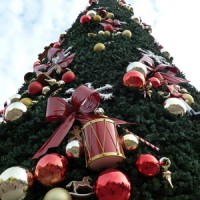 Disneyland Paris Christmas Tree 2011
