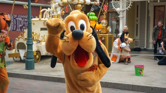 Doggy Wave. Halloween in Disneyland Paris
