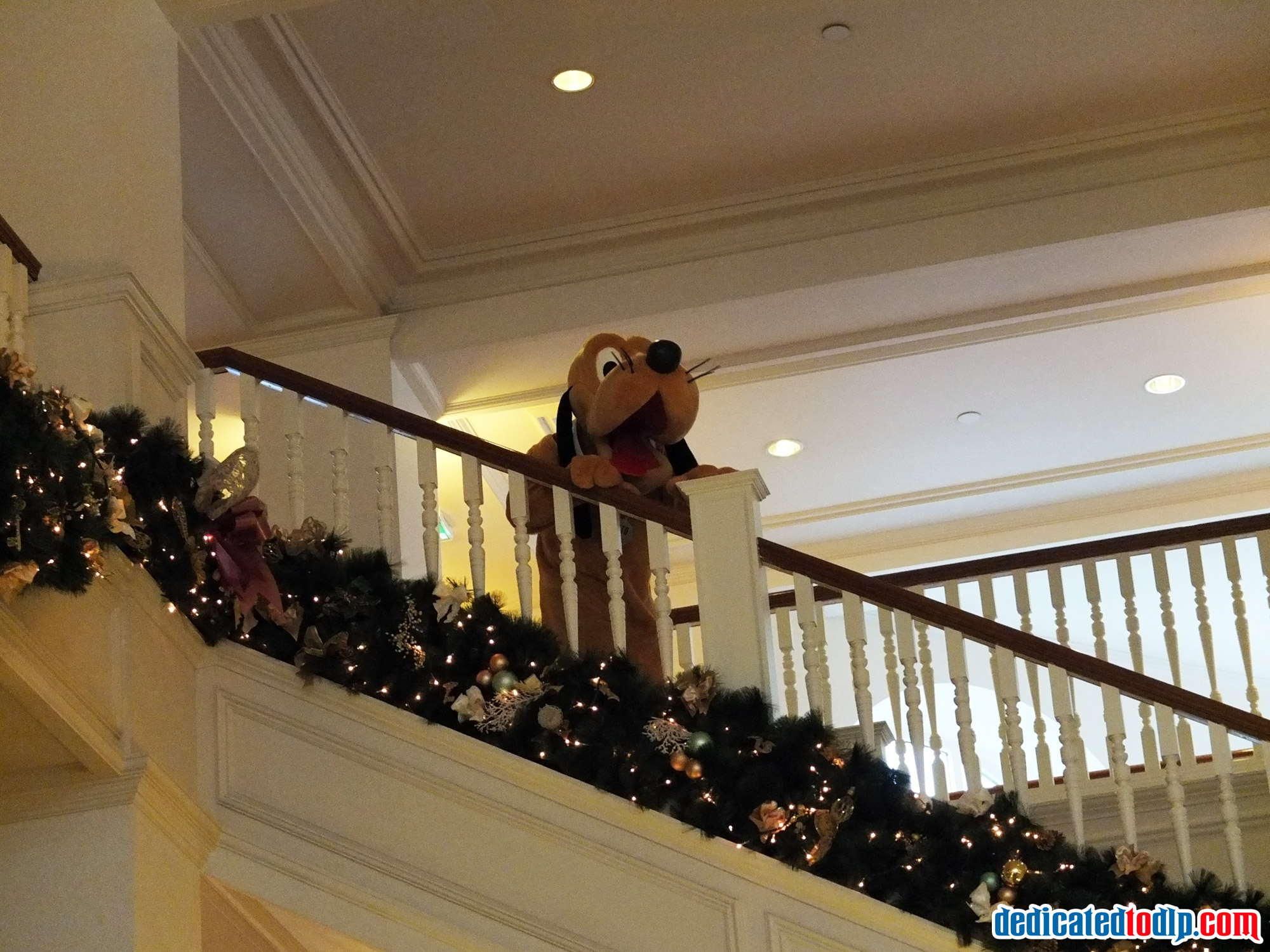 Captivating The Decent Of The Stairs In Disneyland Hotel, Disneyland Paris