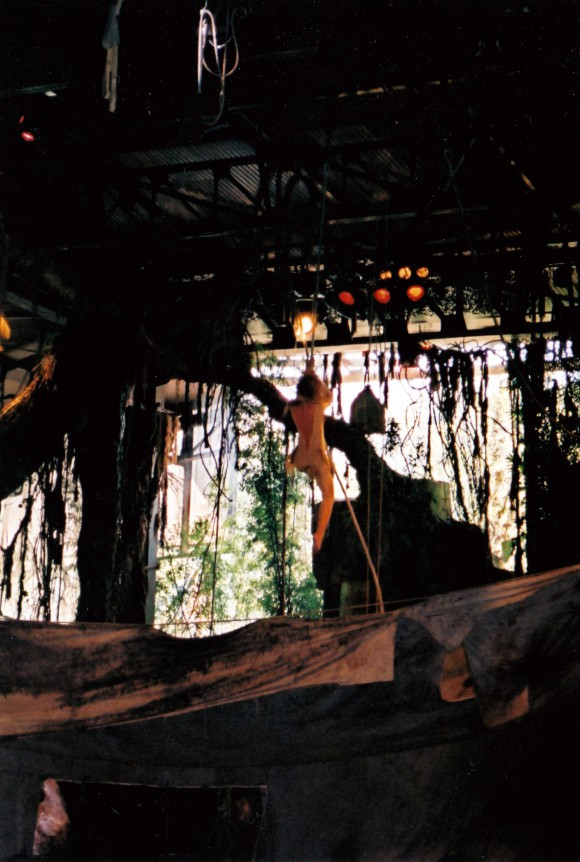 My First Photo of The Tarzan Encounter in Disneyland Paris